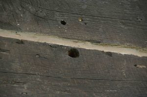 Bullet holes put in the TA Ranch by the posse over 100 years ago in 1892