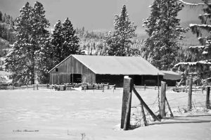 Barn off Duford Road, North Idaho